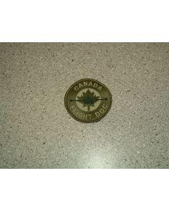 1001 111D - Canada Flight Doc Patch LVG