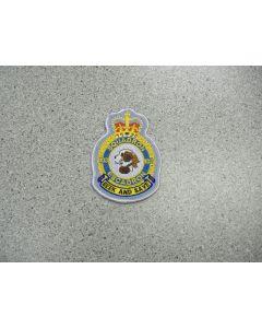 1291 146F - 103 Squadron Heraldic Crest