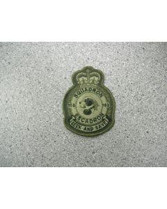 1292 75 C - 103 Squadron Heraldic Crest LVG