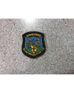 13081 465 F - NORAD Patch Col;oured LVG