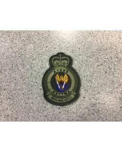 14293 479 F - ATESS Coloured LVG Heraldic Crest