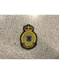 14437 601 A - 12 AMS Heraldic Crest Coloured LVG