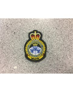 14784 24 D - Canadian Forces Aircrew Selection Centre Coloured LVG Heraldic Crest