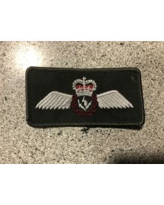 15094 63A- AESOP wings Coloured LVG Patch