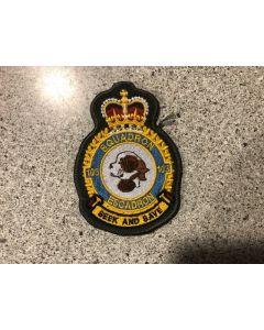 15542 54A- 103 Squadron Heraldic Crest Coloured LVG