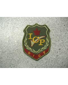 1599 99 E - Division Instrument Check Pilot Patch LVG