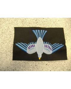1670 - Dove for church project