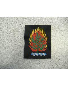 1671 - Burning Bush