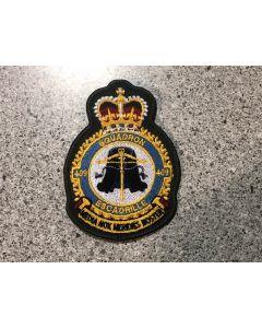 17234 - 409 Squadron Heraldic Crest Coloured LVG