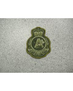 2028 141B - RGS(A) Heraldic Crest LVG
