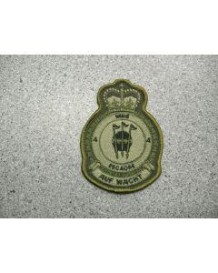 2106 249C - 4 Wing Cold Lake Heraldic Crest LVG