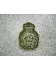 2153 - 3 Air Maintenance Squadron Heraldic Crest LVG