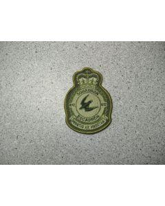 2603 109A - 412 Squadron Heraldic LVG