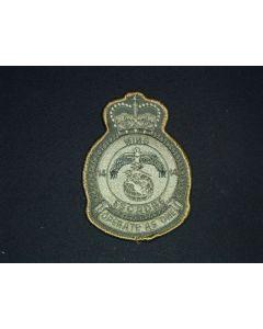 261 211C - 14 Wing Heraldic Crest LVG