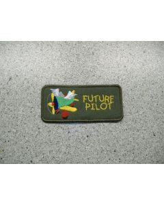 2885 718 H - Future Pilot Wings
