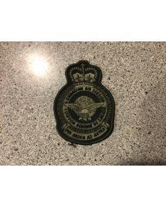 2 89B- 1 Canadian Air Division Heraldic Crest LVG (1 CAD)