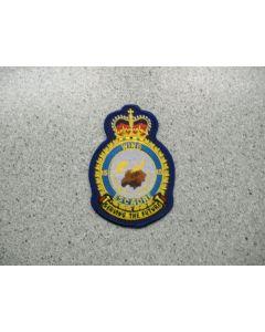 3120 259 A- 15 Wing Heraldic Cest