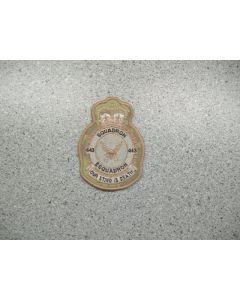 3166 168 C - 443 Squadron Heraldic Crest Arid CADPAT