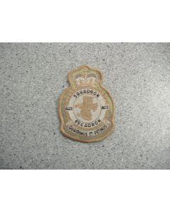 3186 168B - 423 Squadron Heraldic Crest ARID
