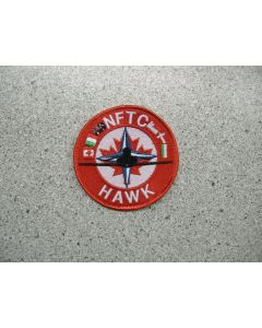 3401 171E - NFTC Hawk International Patch
