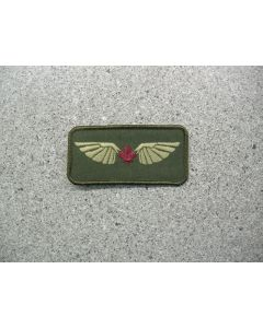 3417 723 C - Wings Nametag Style - Allied Wings Portage LVG