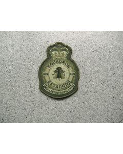3742 290 B - 409 Squadron Heraldic Crest LVG