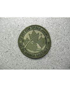 3881  227 B - CF Det Cdn Space Agency Patch LVG