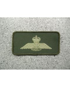 4183 193 A - Cadet Wings Nametag style LVG - Fall 2008