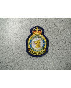 4249 238 D - 424 Squadron Heraldic Crest