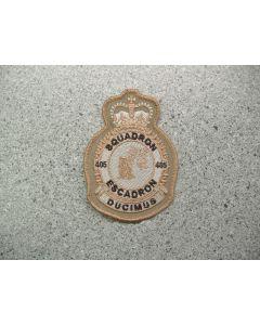 4300 232C - 405 Squadron Heraldic Crest Tan