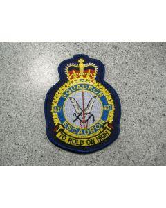 5537 - Squadron 407 heraldic color