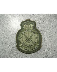 5538 308 E - Squadron 407 heraldic LVG