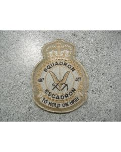 5539 298D - Squadron 407 heraldic Tan