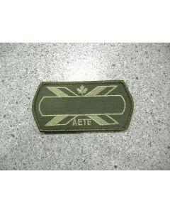 5542 - AETE Nametag LVG