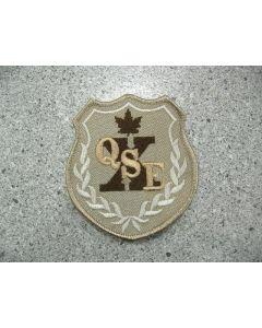 5555 - QSE Patch Tan
