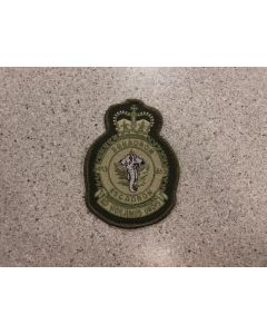 6054 278 E - 413 Squadron Heraldic Crest Grey Elephant