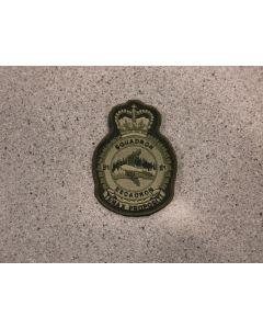 7083 290A - 51 Squadron Heraldic Crest LVG