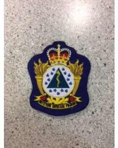 8442 347A - CFSSAT Heraldic Crest (Upgrade image)