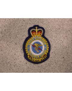 8595 - 42 Radar Squadron Heraldic Crest