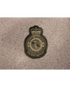 8596 - 42 Radar Squadron Heraldic Crest LVG