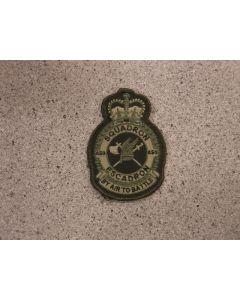 8650 357 B- 450 Squadron Heraldic Crest LVG