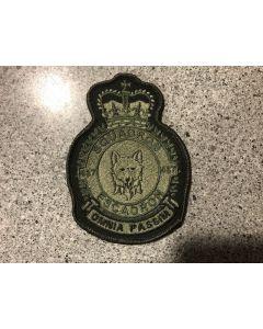 9044 44G- 437 Squadron Heraldic Crest LVG