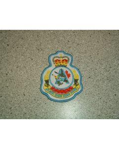 986 277C - RGS(A) Heraldic Crest
